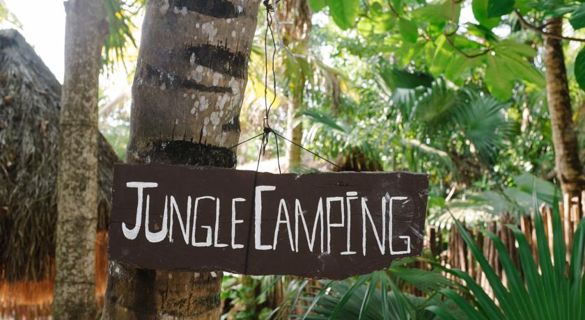 camping insolite jungle