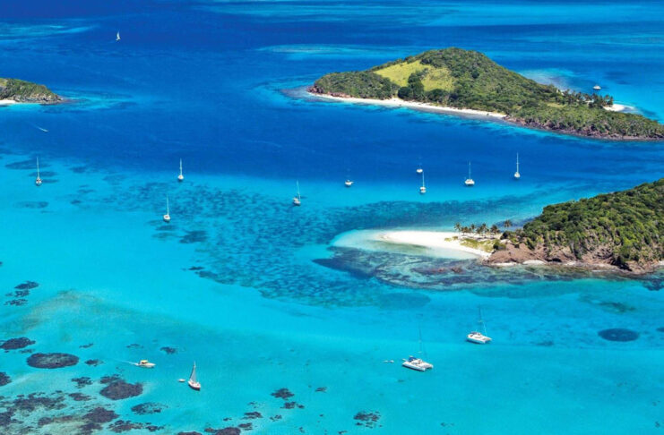 tobago cays saint vincent grenadines