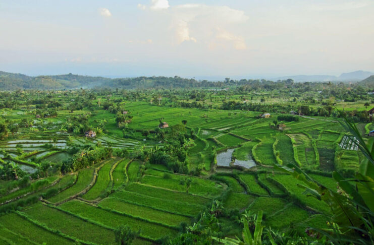 voyage indonesie bali